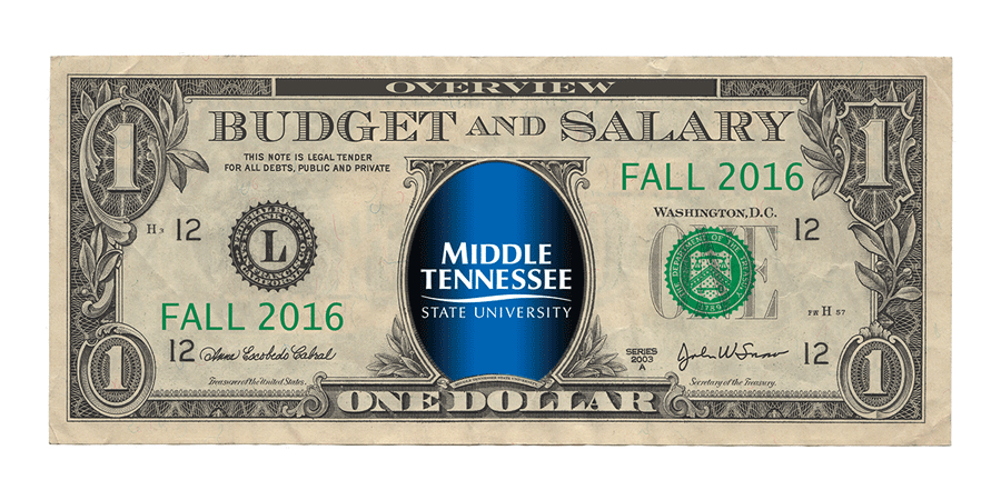Spring 2019 Budget and Salary Overview