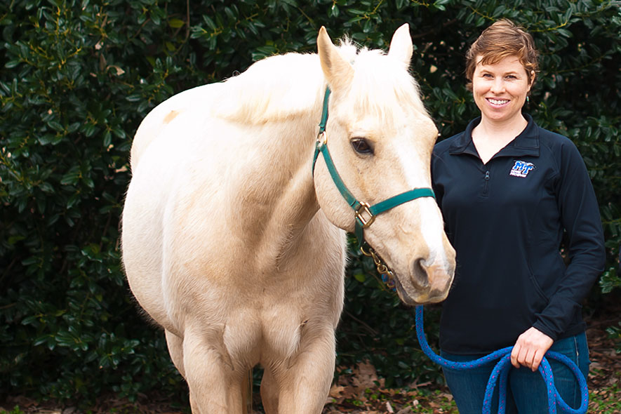Graduate student uses equine therapy to aid veterans