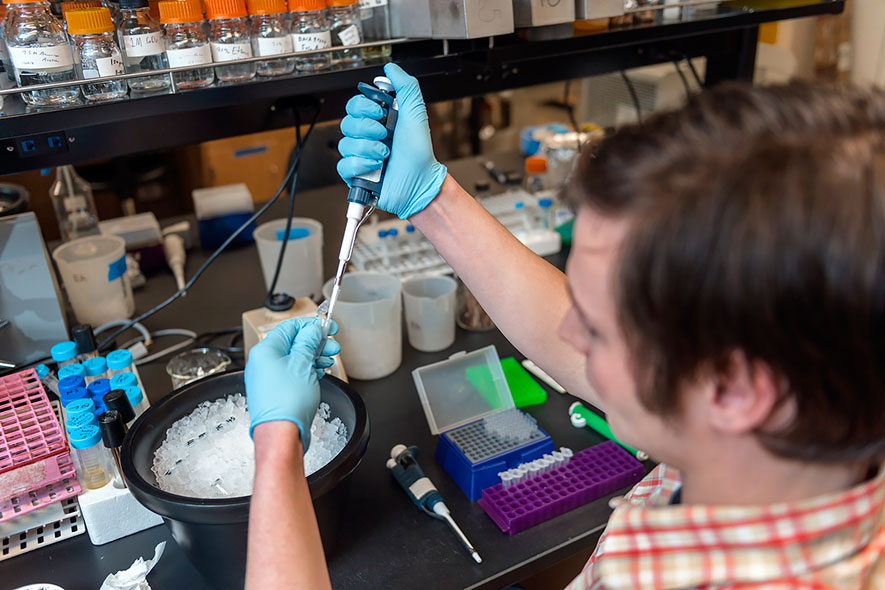 Ph.D. students enjoy numerous lab opportunities